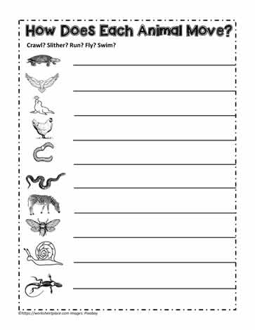 Animals That Swim Fly Crawl Or Run Worksheets
