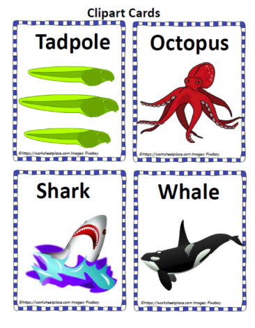 Clipart of Aquatic Life