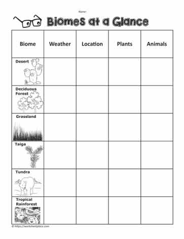 Biome Graphic OrganizerWorksheets