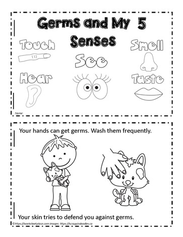Booklet for 5 Senses and Germs