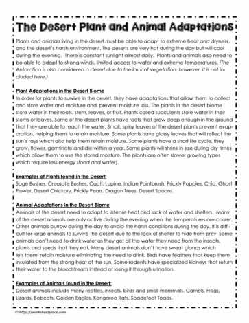 Desert Plant And Animal Adaptations Worksheets