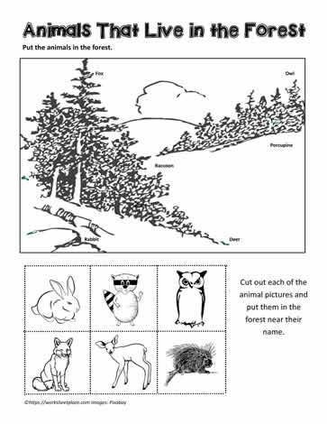 forest animals worksheets. Black Bedroom Furniture Sets. Home Design Ideas