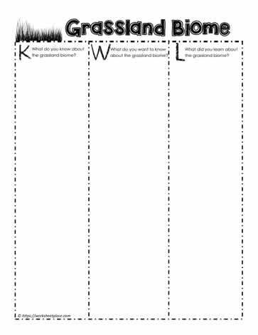 Biomes Worksheet Place - Free worksheets library - Download