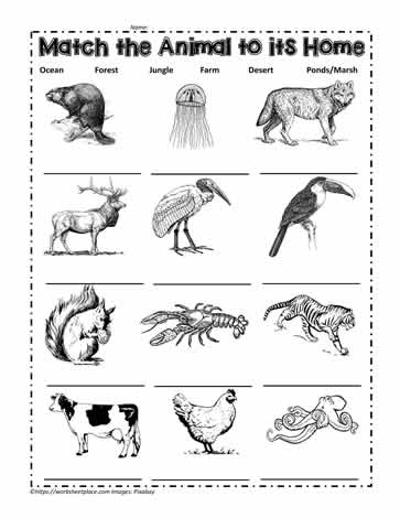 Ocean Animal Color Pages_coloring Pages Of Animals That Live In The Water on Pond Worksheets First Grade Habitats