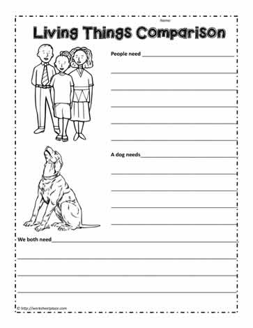 Living Things Comparison Worksheet