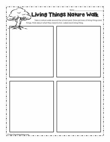 living things nature walk worksheets. Black Bedroom Furniture Sets. Home Design Ideas