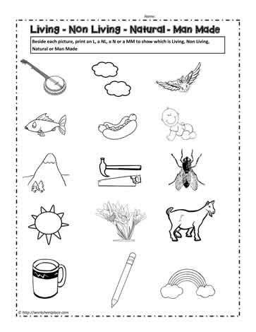 Living and Non Living Things Worksheet