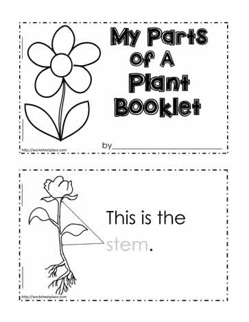 math worksheet : parts of a plant worksheetsworksheets : Parts Of A Book Kindergarten Worksheet