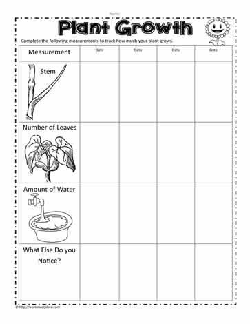 Plant Growth Measurements Worksheets