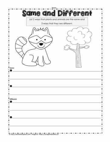 Printables Singapore School Classification Of Living Things Worksheet living and non things worksheetsworksheets plant animal needs