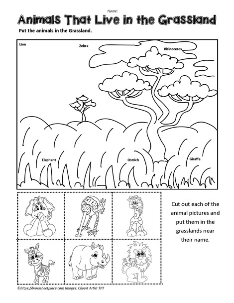 Prairie Animals Worksheet