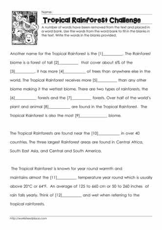 Tropical Rainforest Cloze Worksheet