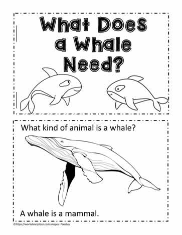 Animal Book for Whale Needs