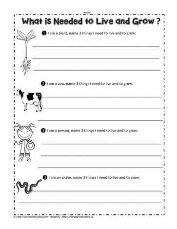 Animal Needs Worksheets