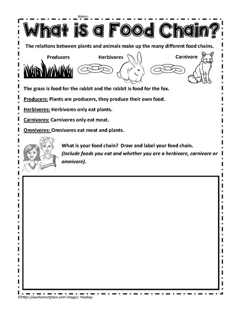 Food Chain Activities  EnchantedLearning as well  together with Coral Reefs  The Ocean's Treasure additionally Food Chain Activities  EnchantedLearning also What is a Food Chain Worksheets likewise 1 2  Food Web Worksheet additionally Ocean Food Chain Worksheets furthermore Food Webs  Food Chains and Trophic Levels Worksheet V2 also  besides Food Chain Worksheets together with Food Chain Activities  EnchantedLearning likewise Name furthermore Worksheet   1 further plete the Food Chains Worksheet  2  EnchantedLearning together with  as well Food Chain Worksheet The best worksheets image collection   Download. on complete the food chains worksheet