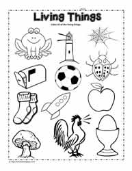 Printables Singapore School Classification Of Living Things Worksheet living and non things worksheetsworksheets circle the worksheet