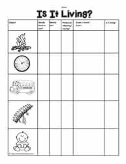 Worksheets Living And Nonliving Worksheets living and non things worksheetsworksheets is it living