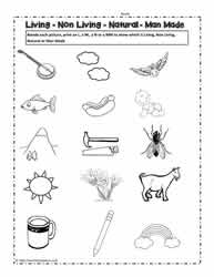 living and non living things worksheets. Black Bedroom Furniture Sets. Home Design Ideas
