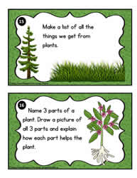 Plant Task Cards 15- 16