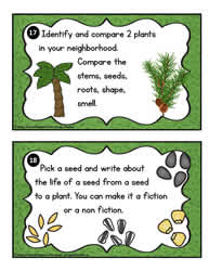 Plant Task Cards 17-18