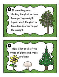 Plant Task Cards 3-4