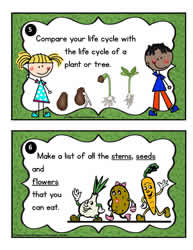 Plant Task Cards 5-6
