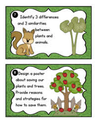 Plant Task Cards 7-8
