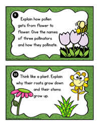 Plant Task Cards 9-10