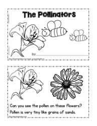 Pollinator Booklet