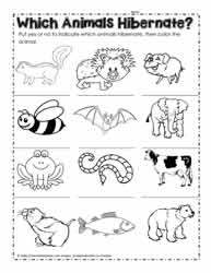 Worksheets Hibernation Worksheets hibernation worksheetsworksheets animals that hibernate